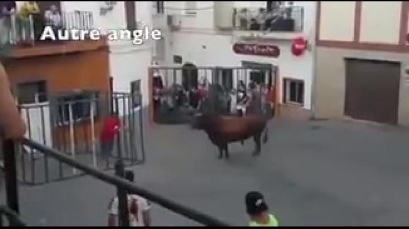 В Испании помимо корриды есть ещё одно странное развлечение. Смельчаки забираются в железную клетку и, чувствуя безопасность, др