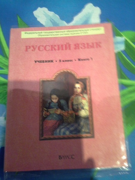 5 2 класс бунеев 2100 гдз часть русский школа язык