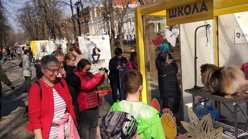 Тверской бульвар весной