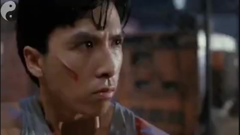 [v-s.mobi]Donnie Yen vs Gary Daniels fight scenes