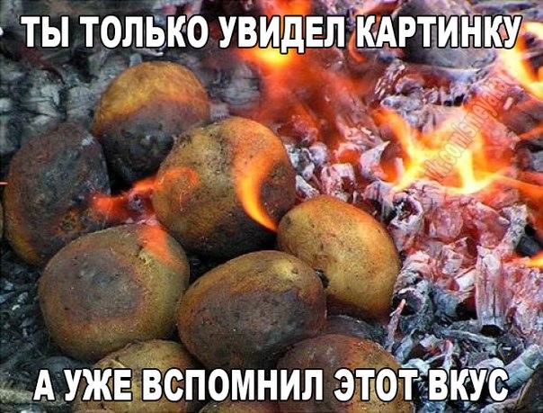 http://cs7050.vk.me/c7002/v7002850/d580/ZiRhkG8Rw1A.jpg