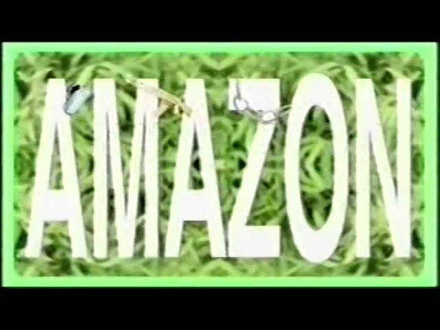 Boeboe - Amazon Basin'