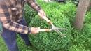 Jak uformować kulę z Bukszpanu How to form a sphere from a boxwood