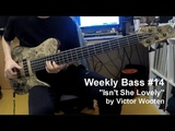 #14 Victor Wooten - Isn't She Lovely (Bass Cover)
