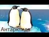 Уроки Тетушки Совы - география для детей - серия 9
