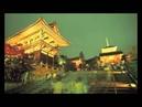 Dubstep Kyoto Ocelot Remix Remix