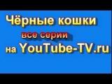 Сериал Чёрные кошки 1 серия 2,3,4,5,6,7,8 смотреть онлайн все серии скоро 9-11-13-15 фильм 2013
