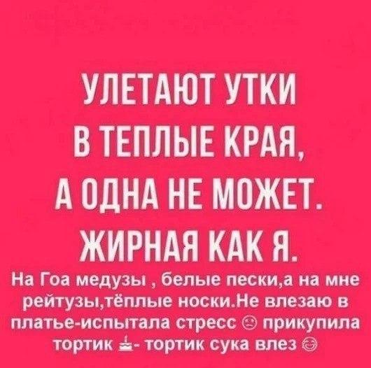 https://pp.userapi.com/c635100/v635100953/22a7d/knQ8cYUeOZQ.jpg