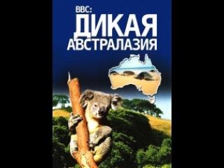 Фильм BBC: Дикая Австралазия (Wild Australasia). Серия 5 - смотреть легально и бесплатно онлайн на MEGOGO.NET