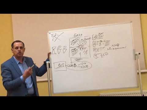 Обучающая Академия по Криптоиндустрии Easybizzi Community
