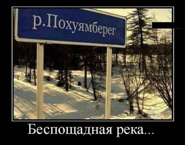 http://cs14115.userapi.com/c7008/v7008113/1697/xhwZSmsMsN8.jpg