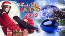 1 Hora de La Mejor Música de Navidad - Las 25 Mejores Villancicos Navideños en Español