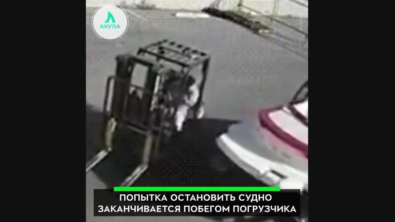 Невезучий сотрудник порта | АКУЛА