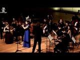 Vivaldi - Concerto for Flute g-moll