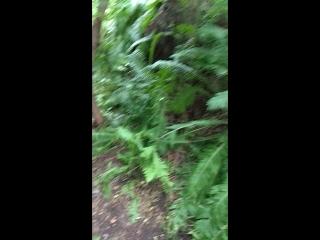 Мой  видео  репортаж  с ущелья  ведьм