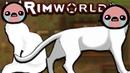 Пришлось совершить ужасное Rimworld