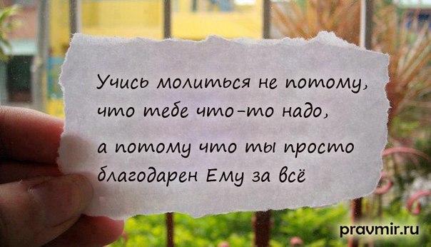 http://cs402423.userapi.com/v402423453/3721/q2yzIAlEDws.jpg
