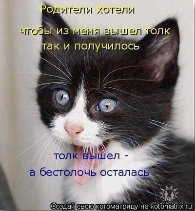 Роман Петров, 17 октября 1988, Рыбинск, id198551110