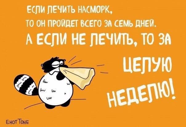 http://cs543107.vk.me/v543107113/39e40/x2CH19HTHbQ.jpg