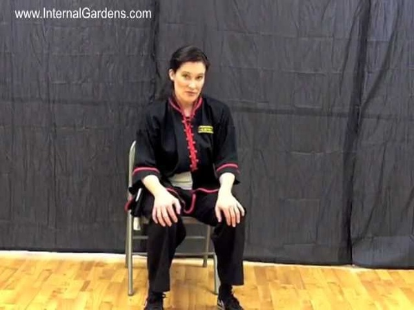 Tai Chi HowTo: Quick Easy Way to Treat Knee Pain or Stiffness - from www.InternalGardens.com