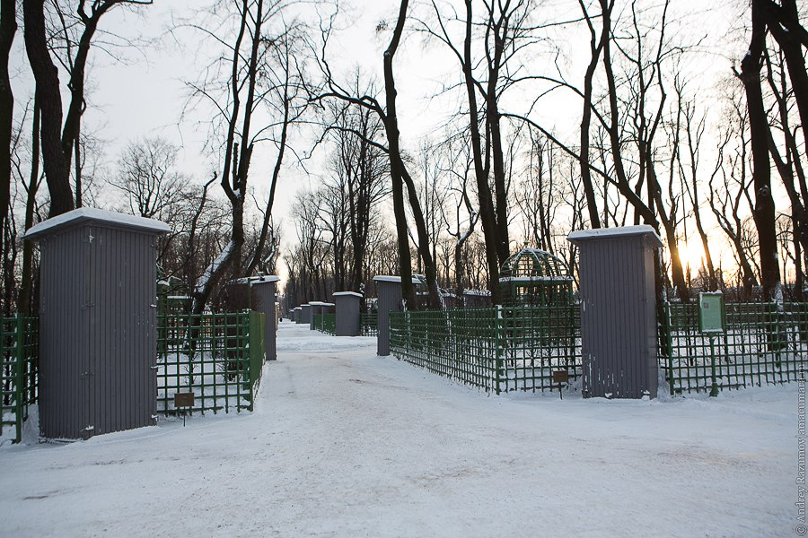 Летний сад режим работы осенью и зимой консервация