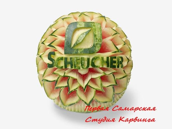 Арбуз с логотипопом Scheucher