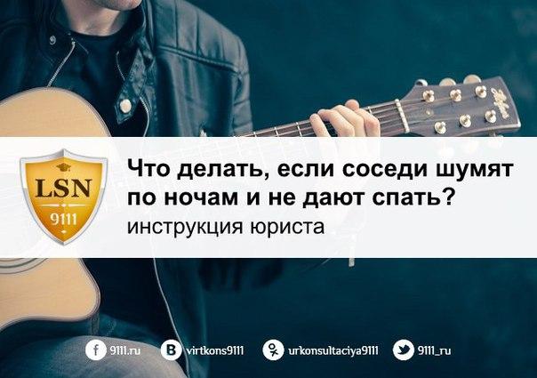 Правовая Инструкция 9111.ru. - фото 3
