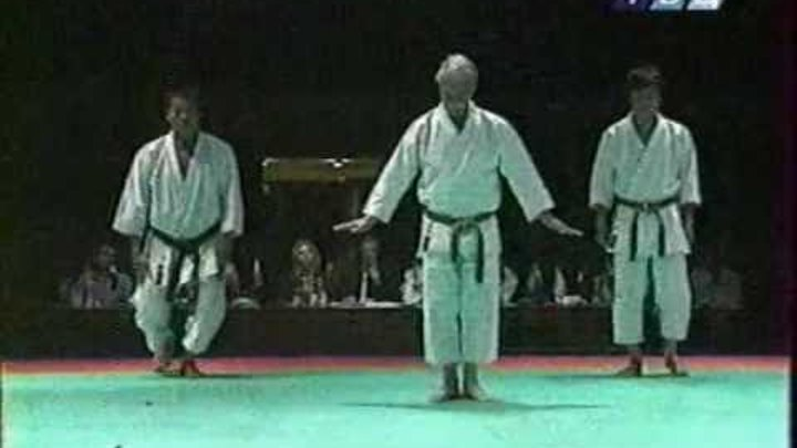 Hidetaka Nishiyama Intercontinental Cup in the traditional karate 2000.