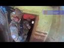 Paraquedistas portugueses envolvidos em confrontos na República Centro-Africana