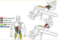 Скручивание вовлекает в работу всю мышечную группу, известную как брюшной пресс.  Она включает прямые мышцы живота...