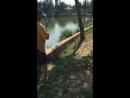 Охота на пиранью