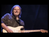 Walter Trout-She Listens To The Blackbird Sing