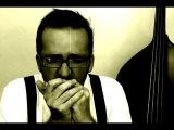 Big Walter Horton Boogie - 1st part - Intro. Blues Harp - Advanced level