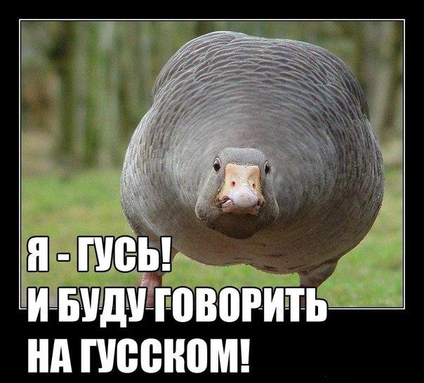 При Януковиче военного усиления РФ в Крыму умышленно не замечали: враг оказался за нашей спиной, - замглавы Госпогранслужбы - Цензор.НЕТ 3046