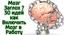30 способов сделать мозг очень умным очень быстро Как ускорить работу мозга и стать умнее за 5 минут