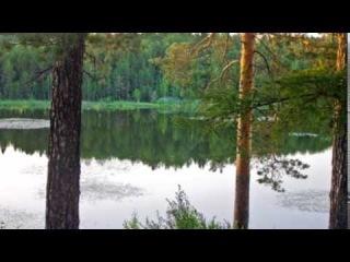 Мазур Світлана (ПНА-13-3): Я.Стельмах  «Митькозаври з Юрківки або Химера лісового озера»