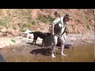 Рыбалка и прогулка на катере Андрея с Арчи