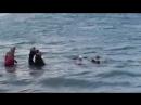 Wacht doch endlich mal auf Hier ertrinken Flüchtlinge. 2 Meter vor der Küste Kretas. So werden wir staatlich verarscht