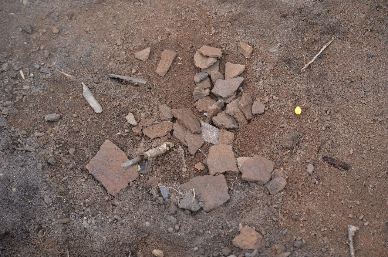 Раскоп на мысе Кедровом, находка- керамика. (06.11.2014)