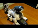 Cute and Smart Sony Robot Dog Aibo ERS-