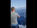 Рыбалка на тенертфе