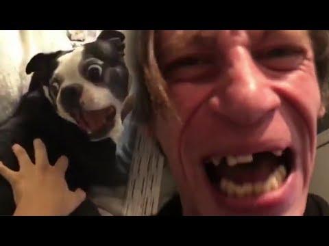 Птеродактиль собаке друг😂 (isee Remix)📢 Pterodactyl dog friend