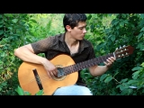 Испанская гитара (Cover ДиДюля - Фламенко)