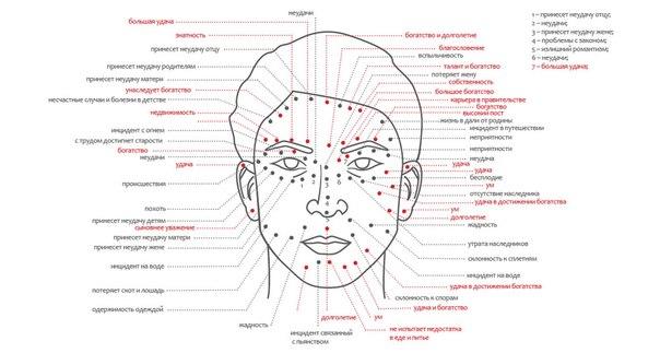 Как выглядят бородавки на теле