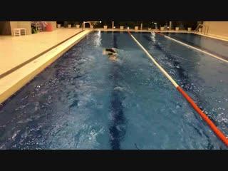 Тест гидрокостюма buni yamamoto pro триатлон