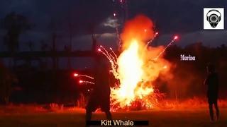 Kitt Whale - Living The Life