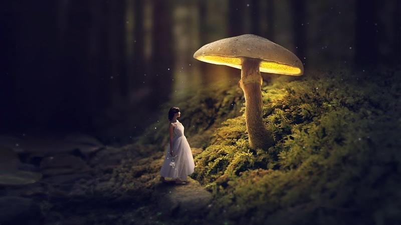 Glowing Mushroom Photoshop Fantasy Manipulation Tutorial