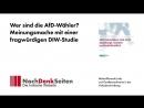Wer sind die AfD-Wähler- Meinungsmache mit einer fragwürdigen DIW-Studie - Jens Berger