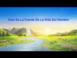 Palabra de vida eterna Dios es la fuente de la vida del hombre