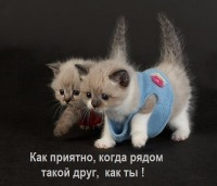 Иван Зельтин, 25 мая , Калининград, id176165285